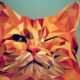 Ways to Create Vector Graphics and Illustrations